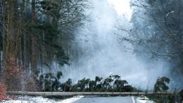 Schneeschauer begleiten kalendarischen Frühling