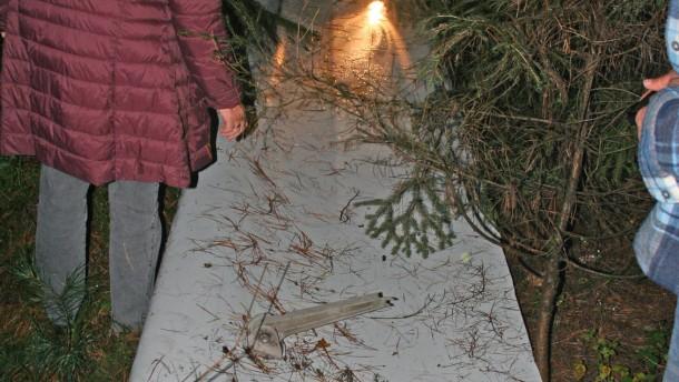 Wieder Flugzeugteile im Frankfurter Stadtwald gefunden