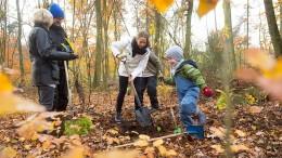 Mit Spaten für Wald und Klima