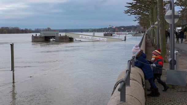 Regen und Tauwetter lassen Flüsse anschwellen
