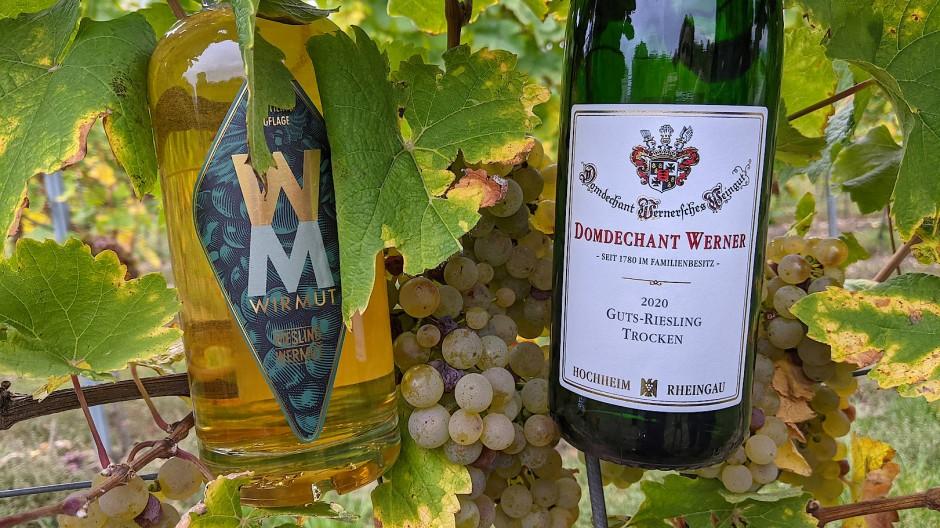 """Riesling-Wermut: Der Wein vom Weingut Domdechant Werner wird von der Brennerei Hoffer Alter mit Gewürzen aromatisiert und so zum """"Wirmut""""."""