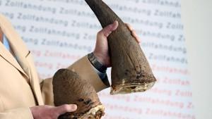 Zöllner beschlagnahmen Nashorn-Hörner