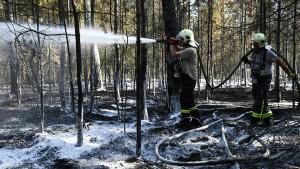 Brandgefahr in hessischen Wäldern stellenweise hoch