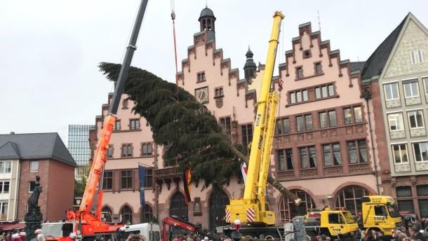 trubel auf dem r mer frankfurt hat einen neuen weihnachtsbaum. Black Bedroom Furniture Sets. Home Design Ideas