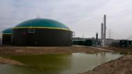 """""""Zufriedenstellend"""": Eine Biogasanlage der HSE."""