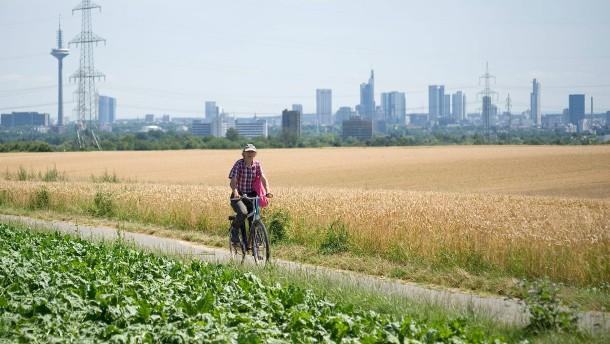 Frankfurt gibt nicht auf
