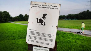 Der harte Kampf gegen den Hundekot