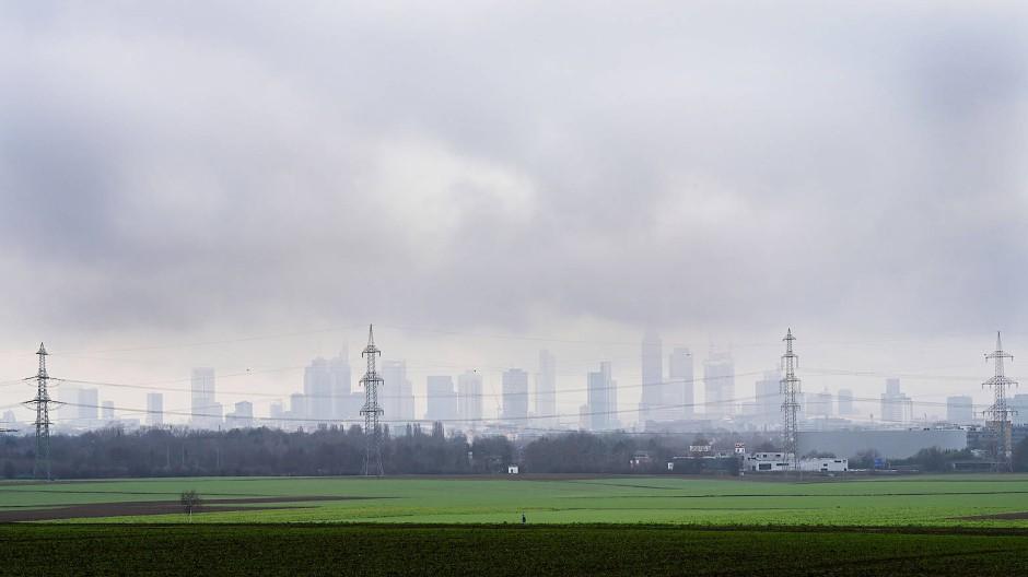 Von wegen weiß: Auch in diesem Jahr war die Weihnacht in Frankfurt wieder eher grün.
