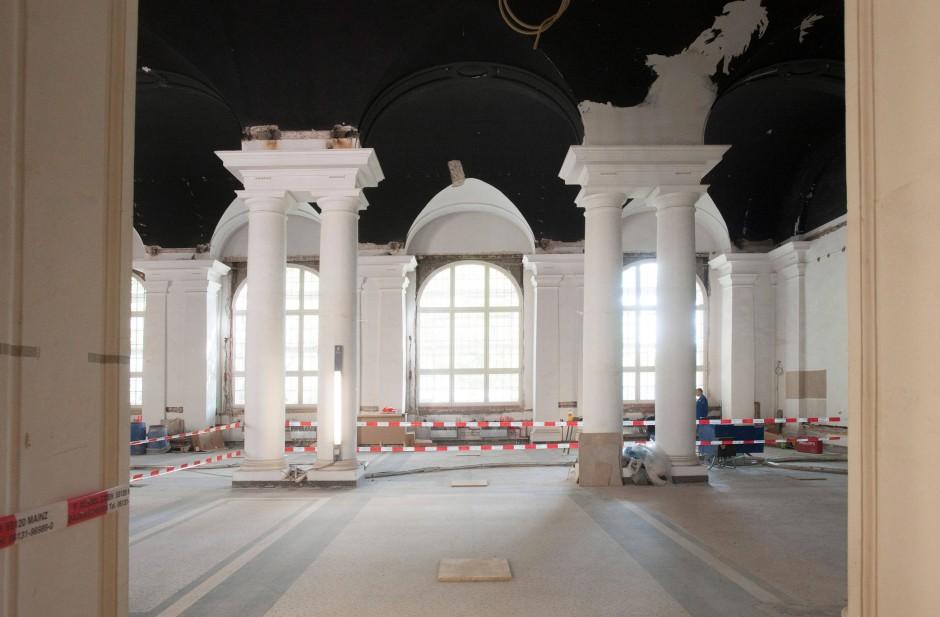 Hessisches Landesmuseum Messel unter dem Teppich und