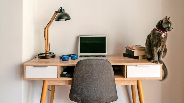 Lieber hier als im Büro?