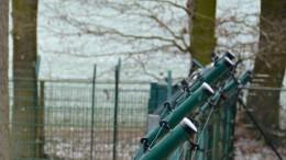 Wildpark will Sicherheit nach Ausbruch von Wölfen verstärken