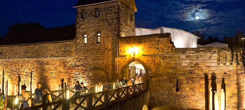 Burgfestspiele Ziemlich Beste Freunde In Bad Vilbel