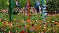 Blumen und mehr: Eine Landesgartenschau wie in Gießen 2014 ist schon lange mehr als die Präsentation von Beeten und Pflanzen.