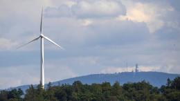 Die Klimapolitik spaltet Schwarz und Grün