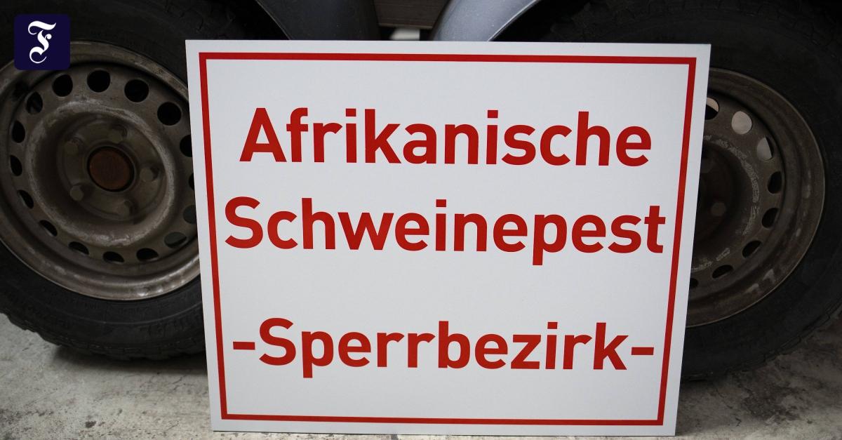Familie Hinz Wieder In Deutschland