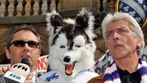 Gericht: DEL muss Kassel Huskies zulassen