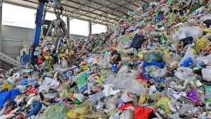 Müllgebühren steigen um zwölf Prozent