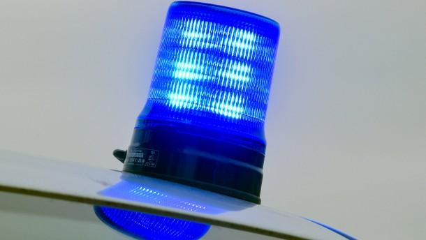 Rehbock büxt nach Unfall aus –  Spargelstand überfallen
