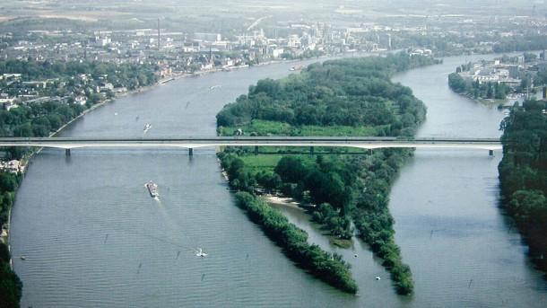 Rhein main media er sucht sie