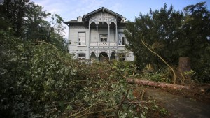 Tornado oder Fallwind: Wetterdienst sucht Zeugen