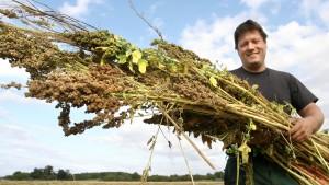 Geld allein wird angehenden Bio-Bauern nicht helfen