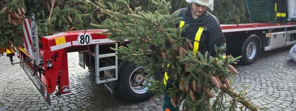 spitze von frankfurter weihnachtsbaum bei transport abgebrochen. Black Bedroom Furniture Sets. Home Design Ideas