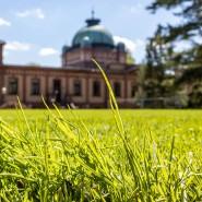 Die Grashalme profitieren: Der Rasen für das Tennisturnier in Bad Homburg hat ein Jahr mehr Zeit.
