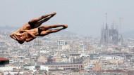Die Wasserspringer genießen bei der WM in Barcelona beste Aussicht