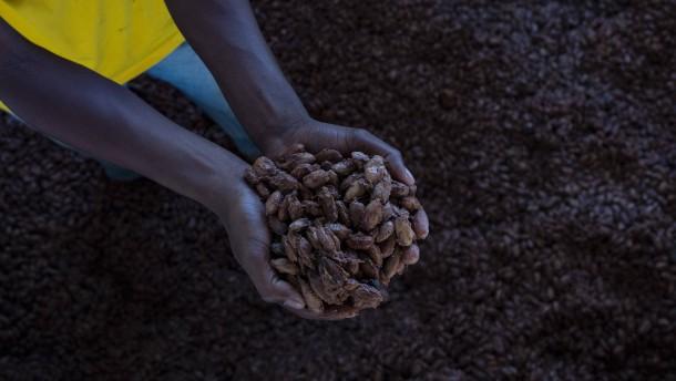 Darum könnte Schokolade bald mehr kosten