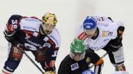 Eisbären gescheitert - Navratilova erkrankt - Hannover weiter