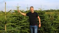 Guido Veth, Herr der Tannenbäume