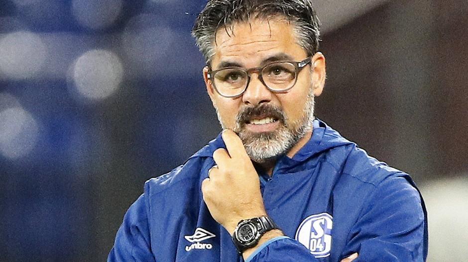 Nicht mehr Trainer bei Schalke 04: David Wagner
