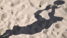 Zauberwort Bundesliga soll Beachvolleyball retten