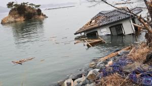 Japan erschüttert die Versicherer nicht