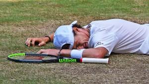 Humbert als Nachfolger von Federer