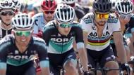 Wieviele Anführer verträgt ein Team? Bei Bora-hansgrohe melden Buchmann, Sagan und Ackermann unterschiedliche Ansprüche an.