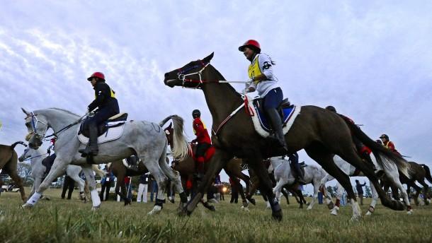 Pferde-Sklaven beim Distanzreiten