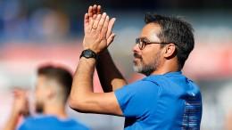 Rebbe wird neuer Sportdirektor – Wagner bleibt wohl Trainer