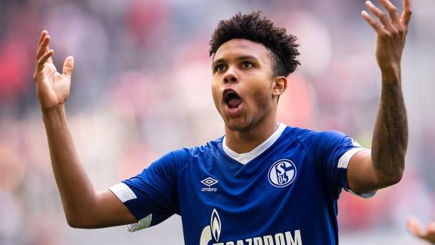 Die kuriose Vorbereitung von Schalke 04