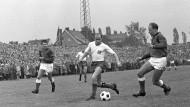 Dino gegen Eintagsfliege: Spielszene aus der Partie zwischen dem Hamburger SV und Preußen Münster am ersten Spieltag 1963