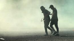 Löwen im Tränengas