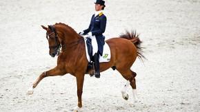 Spielerische Sicherheit: Adelinde Cornelissen und Parzival sind das überragende Paar in Rotterdam