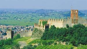 Wohin führt der Weg des italienischen Weißweins?
