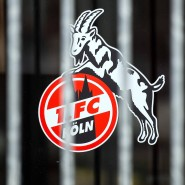 Hat ein neues Auswärtstrikot: Fußball-Bundesligaklub 1. FC Köln