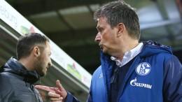 Schalke 04 und die Trainer-Manager-Symbiose