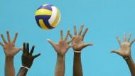 Die deutschen Volleyballerinnen bekommen einen neuen Trainer