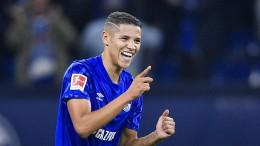 Harits Außenrist beschert beschert Schalke den Sieg