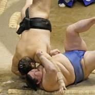 Trotzdem zupackend: Sumo-Ringer im Zeichen von Covid-19