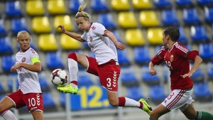 Dänen sagen Qualifikationsspiel ab
