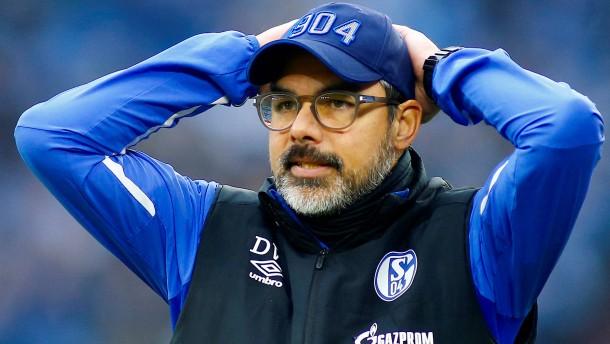 Schalke 04 ist außer sich